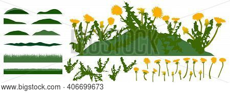 Grassland, Constructor Kit. Beautiful Dandelion Flowers, Grass. Collection Of Element For Create Spr