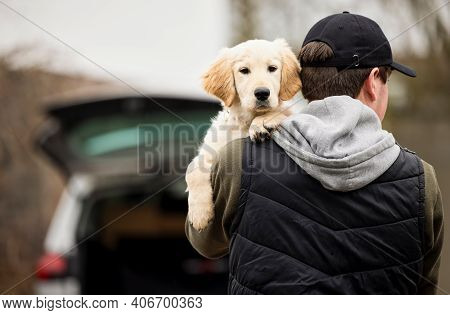 Male Criminal Stealing Or Dognapping Puppy During Health Lockdown