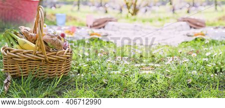 Lunch In The Park On The Green Grass. Summer Sunny Day And Picnic Basket. Sandwiches, Burgers For St