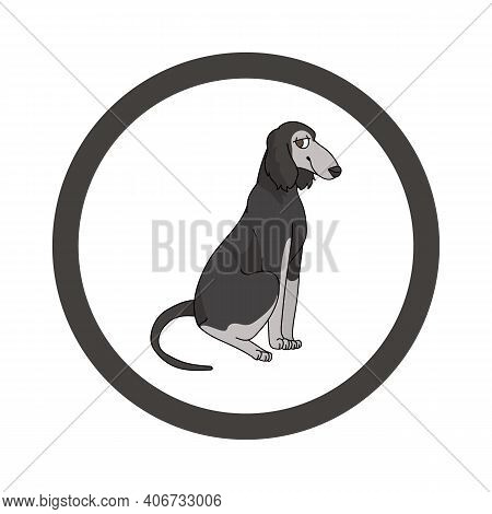 Cute Cartoon Saluki In Circle Dog Vector Clipart. Pedigree Kennel Doggie Breed For Kennel Club. Pure