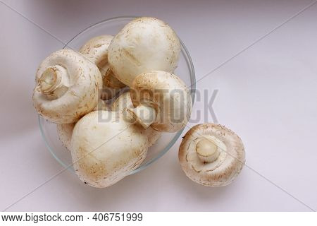 Mushrooms. View From Above. Mushrooms In A Glass Plate And One Mushroom Lies Nearby. Delicious And H