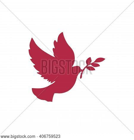 Dove Of Peace Flies And Holds An Olive Branch In Its Beak. Purity, Spirituality And Hope Concept. Pe