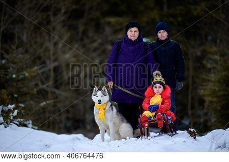 Woman With Grandchildren In The Woods On A Walk, Pet On A Leash In The Woods.