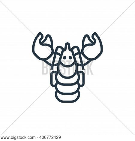 lobster icon isolated on white background from seafood collection. lobster icon thin line outline li