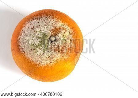 Spoilt Grapefruit Isolated On White Background. Copy Space For Text.