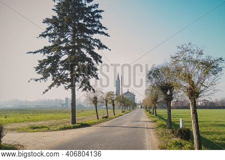 Narrow Asphalt Road With Cut Trees On The Roadside And Field On Both Sides On A Sunny Warm Day. The