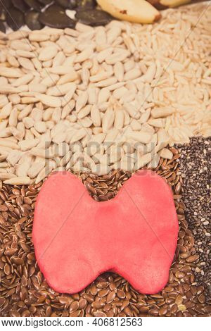 Red Thyroid Shape And Best Nutritious Natural Food For Healthy Thyroid