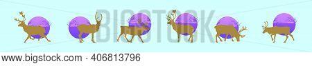 Set Of Deer Or Caribou Cartoon Design Template With Various Models. Modern Vector Illustration Isola