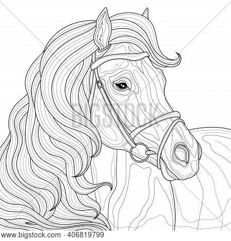 Horse With Mane.coloring Book Antistress For Children And Adults. Illustration Isolated On White Bac