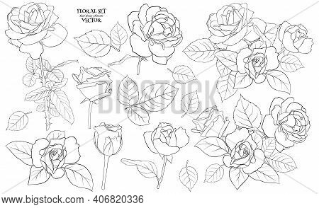 Floral Set Of Delicate Roses With Leaves. A Set Of Contour Drawings For Drawing Up Flower Compositio