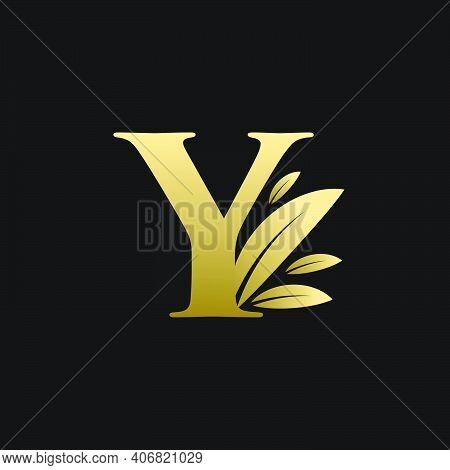 Golden Initial Letter Y Leaf Logo, Alphabet Y Vector Illustration