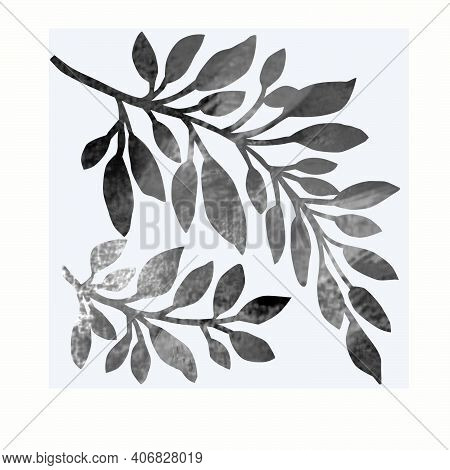 Colorless Design Abstract Textural Twigs And Leaves Isolated On White Background