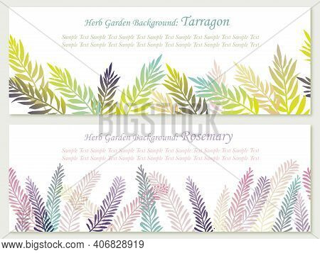 Set Of Seamless Vector Background Illustrations With Herbs: Rosemary And Tarragon. Horizontally Repe