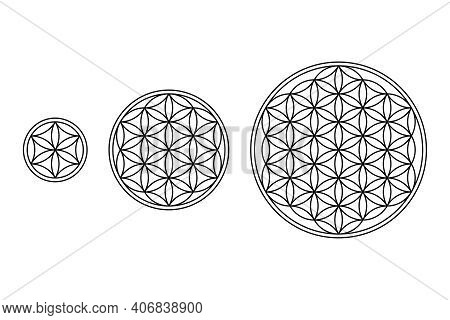 Flower Of Life, Core And Seed Of Life. Geometric Figures And Spiritual Symbols Of The Sacred Geometr