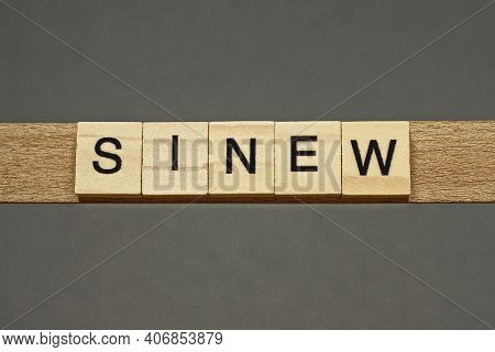 Text The Word Sinew From Brown Wooden Small Letters With Black Font On An Gray Table