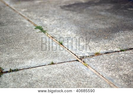 Intersecting lines in cement