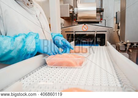 Chicken Fillet Production Line . Factory For The Production Of Food From Meat.food Products Meat Chi