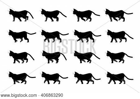Cat Walk Animation. Domestic Animal Silhouette. Walking Black Kitten With Yellow Eyes. Side View Of