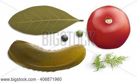 Pickled Vegetables Vector Image. Gherkin, Dill Pepper Tomato Bay Leaf. 3d Vector Realistic Vegetable
