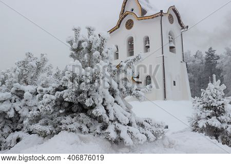 Green Pine Trees In Thick Hoarfrost And Snow Against White Belltower. Christmas Time Background