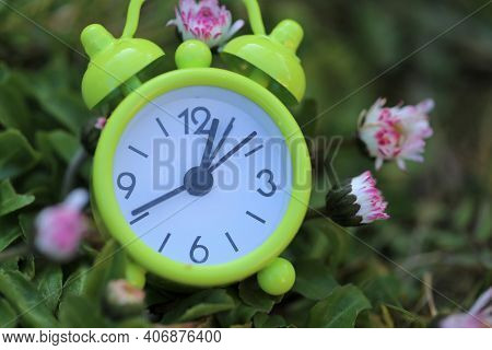 Spring Time. Green Alarm Clock In Flowers. Spring Garden Work.floriculture And Horticulture . Nature