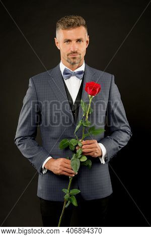 Romantic Gentleman. Man Mature Confident Macho With Romantic Gift. Handsome Guy Rose Flower Romantic