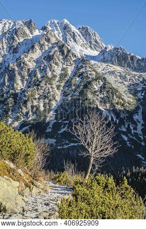 Tourist Path In Mengusovska Valley, High Tatra Mountains, Slovak Republic. Hiking Theme.