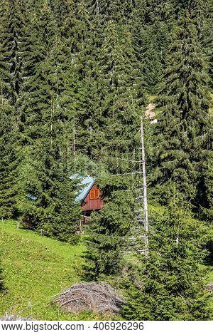 Mountain Hut In Coniferous Forest, Low Tatras, Slovak Republic. Hiking Theme. Seasonal Natural Scene