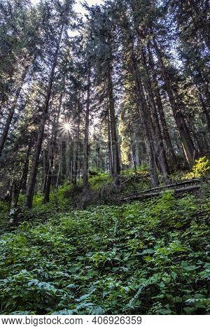 Sunrays In Low Tatras Mountains, Slovak Republic. Hiking Theme. Seasonal Natural Scene.
