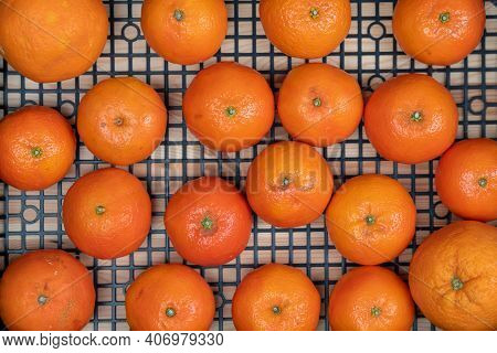 Exotic Citrus Fruits, Tangerines Clementines, In A Plastic Box, Close-up, Top View. Vitamins For Hea