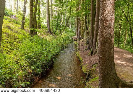 Hiking Trail And Stream Near Trusetaler Waterfall In Thuringia, Germany