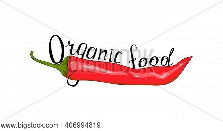 Red Chili Peppers And Hand Lettering. Logo Organic Food. Hand Drawing Chilli Pepper. Vector Illustra