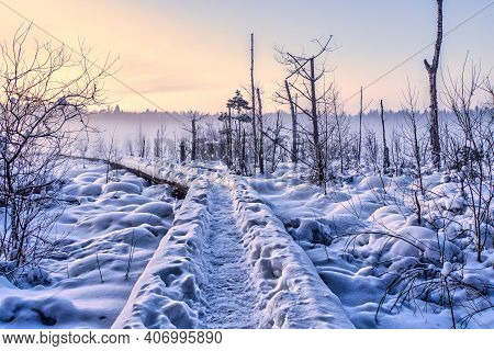 Wooden Footbridge On Hiking Trail And Covered With Snow