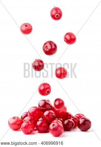 Cranberries Fall On A Pile On A White Background, Levitating Cranberries. Isolated