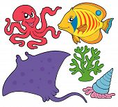 Cute marine animals collection 4 - vector illustration. poster