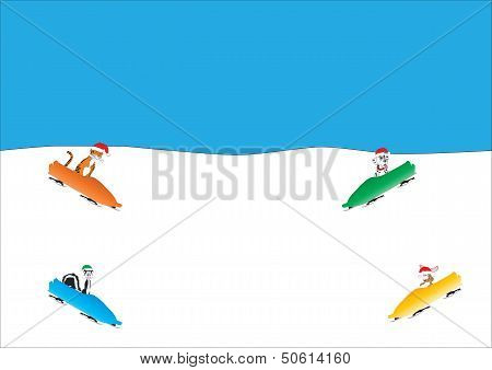 Animal Toboggan Run
