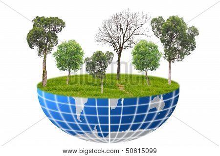 Trees World.