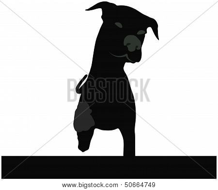 Stock Vector Of Dog Silhouette Standing In Front Of White Background