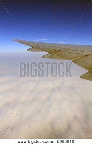Wings In The Blue Sky