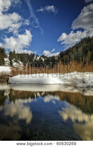 Winter Time Beaver Pond