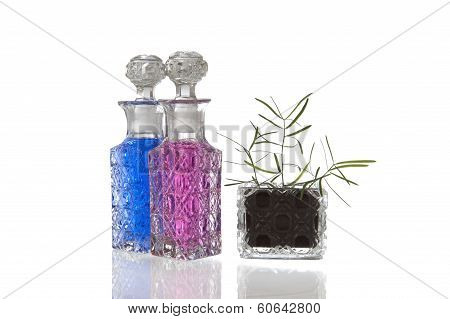 Blue Pink Glass Flagons Plant