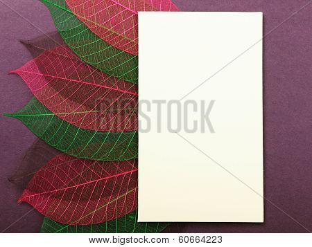 Greeting post card