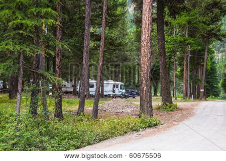 RV Camping In Wooded Campground