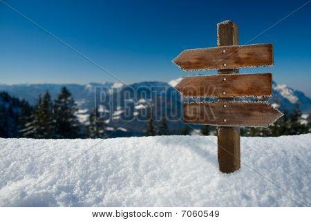 winter backdrop