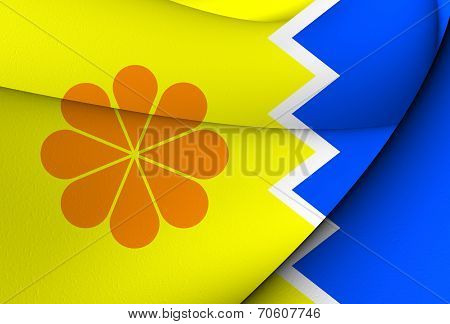 Flag Of Vina Del Mar, Chile.