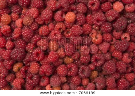 Wild Raspberries Background