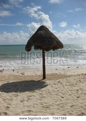 Solitary Beach Umbrella
