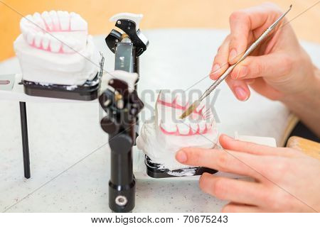 Female dental technician or orthodontist  producing denture with imprint poster