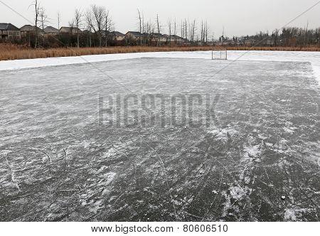 Pond Rink