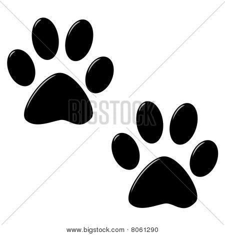 3D Cat Foot Prints
